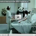 NEVER Say No To Panda Cheese